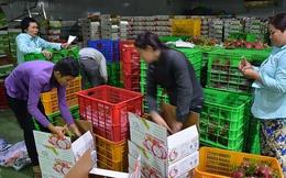 Thị trường Trung Quốc thay đổi, nhiều DN Việt lao đao