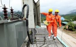 PCC1: Gánh nặng chi phí lãi vay, LNST 9 tháng giảm sút 26% so với cùng kỳ