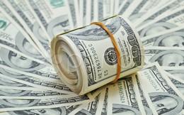 Sớm hoàn thành kế hoạch lợi nhuận cả năm, GHC quyết định tạm ứng tiếp 23% cổ tức bằng tiền