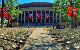 Trượt Harvard là điều tuyệt vời nhất trong cuộc đời Warren Buffett, còn bạn thì sao?
