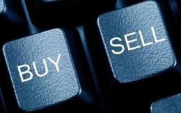Global Mind Việt Nam tiếp tục mua vào gần 3 triệu cổ phiếu SCR của Sacomreal