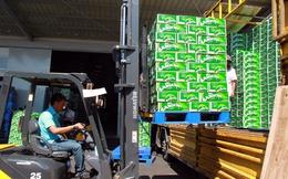 Năm 2016, Việt Nam sản xuất 3,8 tỷ lít bia, tăng hơn 9%