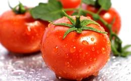 10 loại thực phẩm giải độc gan cực kỳ hiệu quả cho mùa hè