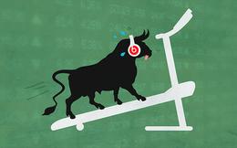 CHUYỆN ANH MUA: Anh Mua quay lại thị trường chứng khoán