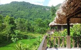 Phó thủ tướng yêu cầu thanh tra toàn diện dự án du lịch sinh thái Song Phương - Bắc An Khánh, Hà Nội
