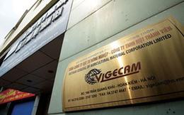 """Vigecam nói gì về 2 lô đất Vũng Tàu """"thất lạc"""" khỏi bản công bố thông tin?"""