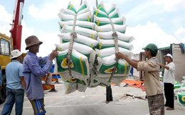 Xuất 1 lô gạo tốn hơn 20 ngàn USD, lo 'chạy' đủ thứ
