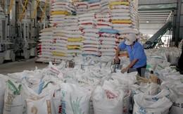 VFA dự báo xuất khẩu gạo năm 2017 sẽ đạt trên 5 triệu tấn