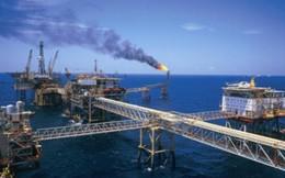 Xuất khẩu dầu thô sang Singapore tăng đột biến