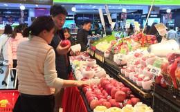 Táo Nhật trăm nghìn một quả mua làm quà biếu Tết