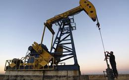 Năm 2018 sẽ là năm đầy thách thức đối với thị trường dầu thô