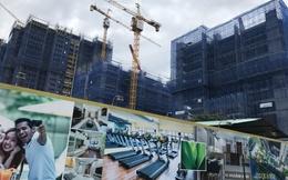 HoREA: Từ nay đến 2020, bất động sản chuyển mạnh sang phân khúc vừa túi tiền