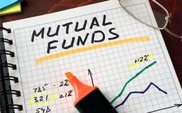 Chuyển động quỹ đầu tư 30/10 - 5/11: Mua ròng diện rộng