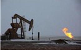 Triển vọng giá dầu: Thị trường chú ý tới hoạt động khai thác của Mỹ