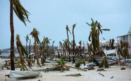 """Sức tàn phá kinh hoàng của """"quái vật Irma"""" qua những tấm ảnh trước/sau"""