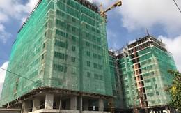 """UBND TP HCM """"bác"""", HoREA vẫn kiến nghị cho làm căn hộ dưới 45m2"""