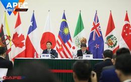 TPP có tên mới: Hiệp định Đối tác toàn diện và tiến bộ xuyên Thái Bình Dương (CPTPP)