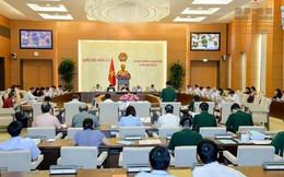 UBTVQH xem xét, phê chuẩn việc bổ nhiệm nhân sự