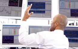 Tháng 7: Khối ngoại trên HOSE giao dịch sôi động, đẩy mạnh mua ròng 2.807 tỷ đồng