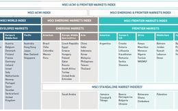 9 cổ phiếu Việt Nam bao gồm SSI, SAB, HSG, NVL vào rổ MSCI Frontier 100 Index