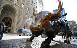 """Giải mã sự """"bùng nổ"""" của cổ phiếu dòng ngân hàng"""