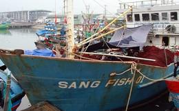 Thủ tướng yêu cầu kiểm tra việc đóng mới tàu cá vỏ thép