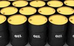 Giá dầu tăng do dấu hiệu trữ lượng dầu thô Mỹ tuần này giảm