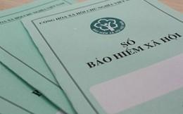 Thay đổi Ủy viên Hội đồng quản lý BHXH Việt Nam