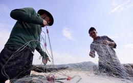 Tổng sản lượng thủy sản tăng 3%
