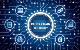Cổ phiếu tăng 394% trong 1 phiên nhờ thêm cụm từ blockchain vào tên gọi