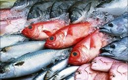 15 ngày tới phải công bố về hải sản tầng đáy biển miền Trung