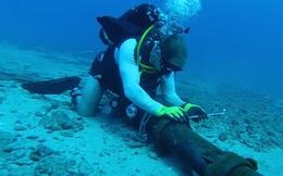 Khắc phục 80-90% đường truyền cáp quang biển