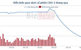 """[Cổ phiếu nổi bật tuần] CDO - cổ phiếu """"vẽ chart"""" từng có P/E 38 lần"""