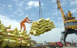 """Kinh tế Việt Nam """"cần tăng tốc thay vì chậm rãi đi lên"""""""