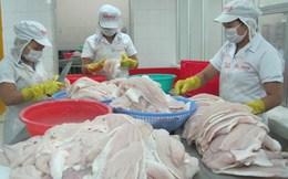 Một số lô thủy sản bán sang EU bị cảnh báo, trả về