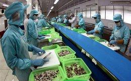 """Thủy sản xuất sang Trung Quốc dự báo lọt top """"tỷ đô"""""""