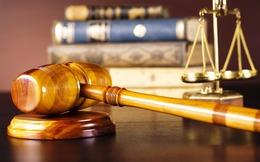 ĐBQH: Không chỉ cá nhân mà cả Công ty chứng khoán sẽ phải chịu trách nhiệm nếu làm giả hồ sơ kinh doanh