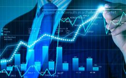 Agriseco lãi 6 tháng cao kỷ lục, hoàn thành vượt 24% kế hoạch lợi nhuận năm 2017