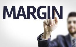 TDH bị đưa vào danh sách không được cho vay margin, cổ phiếu giảm sàn