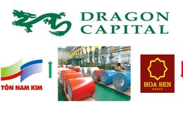 Dragon Capital chốt lời Tôn Hoa Sen, rót vốn lớn vào Tôn Nam Kim (NKG)