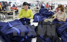 Chủ tịch Vitas: Xuất khẩu dệt may năm nay sẽ tăng trưởng 13-14%