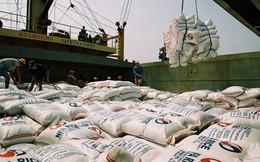 """Nâng chỉ tiêu xuất khẩu gạo lên 5,6 triệu tấn: Gạo Việt Nam """"trở mình"""" đầy lạc quan"""