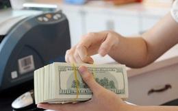 Vay USD ở ngân hàng TM Nhà nước rẻ hơn nhiều so với ngân hàng cổ phần
