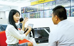 M&A CTCK - Thời của vốn ngoại
