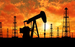 """Cổ phiếu dầu khí Việt Nam GAS, PVD, PVS...  """"nín thở"""" chờ cuộc họp ngày 30/11"""