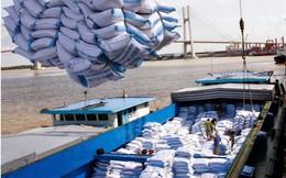Tăng cường xuất khẩu gạo sang Bờ Biển Ngà