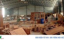 """Ngành gỗ khó phát triển vì """"mạnh ai nấy làm"""""""