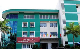 Kon Tum: Giám đốc Ngân hàng Agribank Chi nhánh Kon Rẫy bị tạm đình chỉ công tác