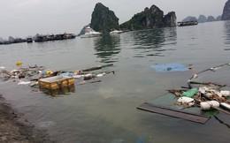 Kinh hoàng rác bủa vây vịnh Hạ Long