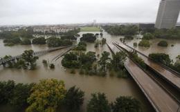Chẳng riêng ở Việt Nam, thành phố lớn thứ 4 của Mỹ cũng ngập nặng vì quy hoạch kém